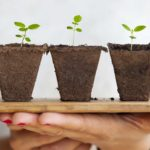 How to Make Your Small Business Grow Quickly